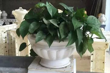 花盆模具工程应用案例